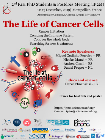The life of cancer cells